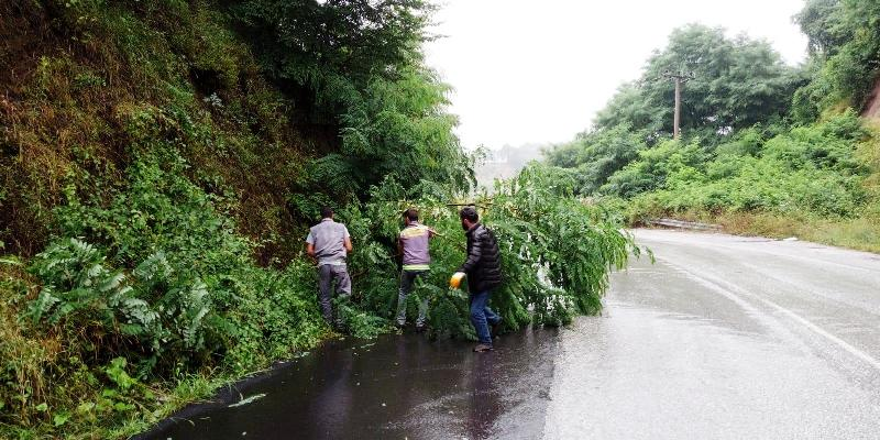 Hendek'te yağmurla mücadele