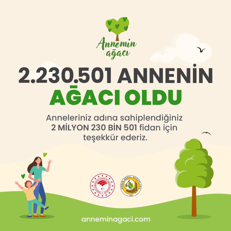 2 milyon annenin ağacı oldu
