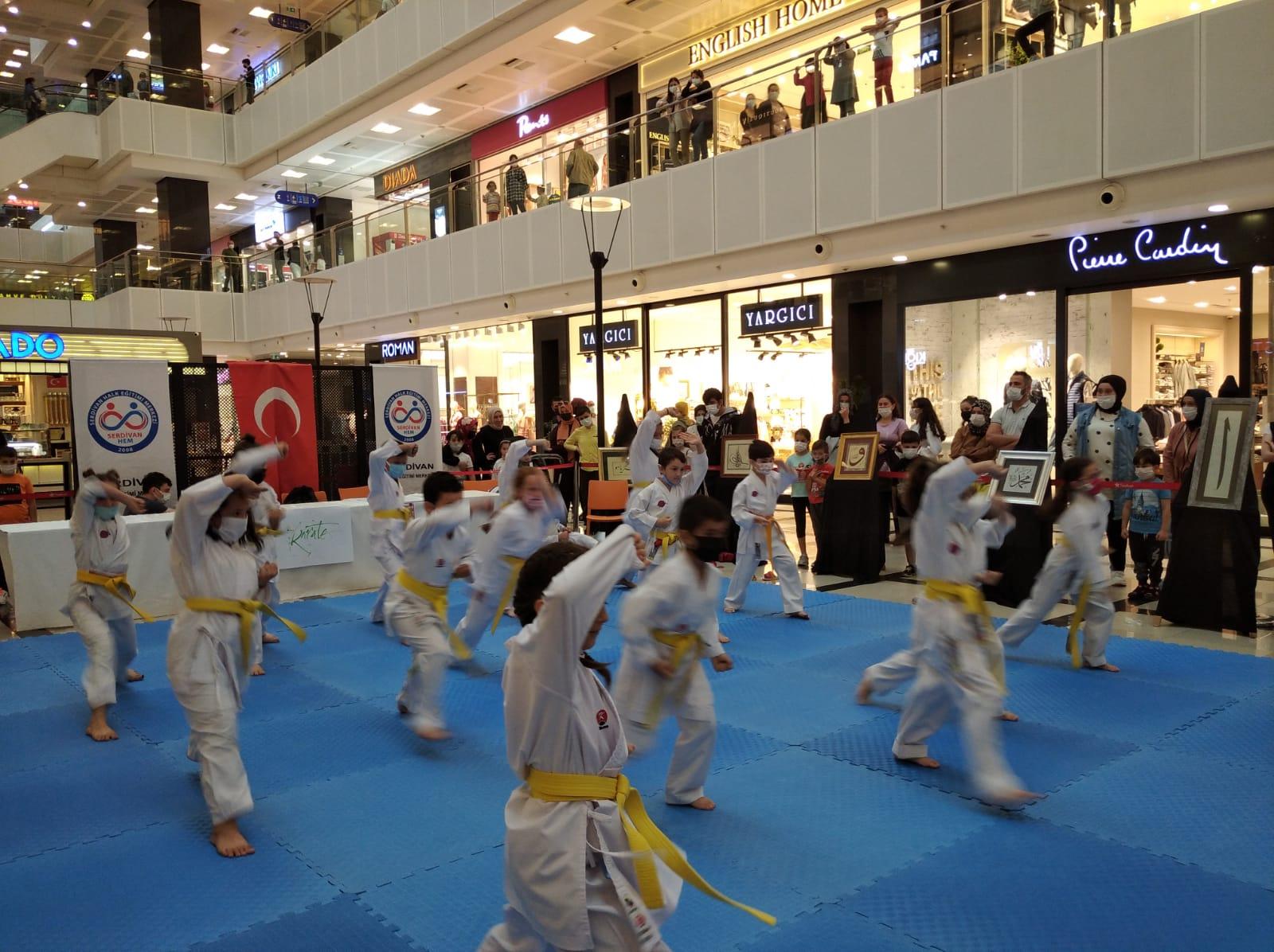 Serdivan'da karate şov