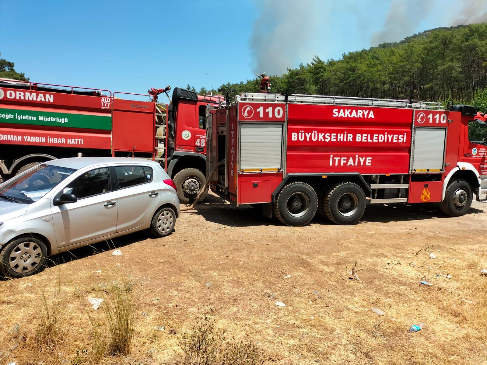 Sakarya itfaiyesi yangın bölgesinde